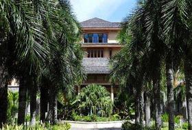 Hotel Allamanda Beach Resort & SPA