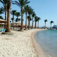Hotel Movenpick Resort Hurghada