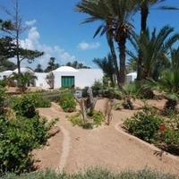 Tanie studenckie wycieczki do Tunezja, Zarzis, Midoun