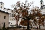 Twierdza Hohensalzburg - Salzburg