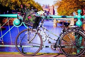 Amsterdam i Poczdam - Festiwal tulipanów i Miasto Pałaców
