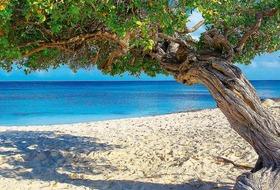 Antyle i Karaiby Południowe - Rejs z Cartageny