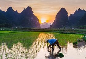 Indie i Wietnam w pigułce***