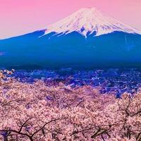 Japonia - wyspa Honsiu