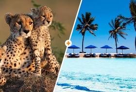 Kenijskie trio + Jacaranda Indian Ocean