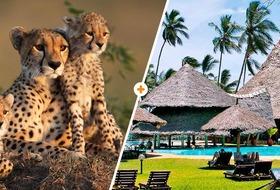 Kenijskie trio + Neptune Paradise