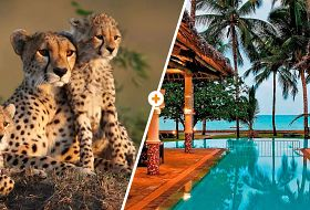 Kenijskie trio + Neptune Village Resort