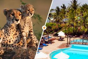 Kenijskie trio+ Voyager Beach