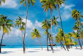 Kolorowe Indie, bajeczne Malediwy