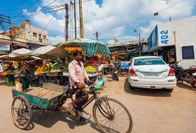 Kulinarne Indie