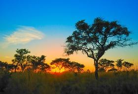 Mozambik i safari w RPA