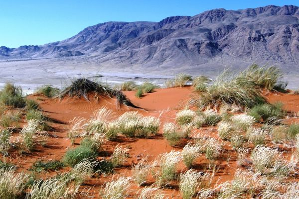 Namibijska wyprawa - zwiedzanie Namibii
