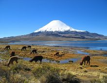 Patagonia Tour: Argentyna i Chile +