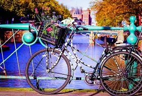 [PLATINUM] Amsterdam i Brema - Festiwal