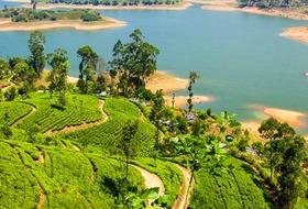 Sri Lanka Łza z policzka Indii