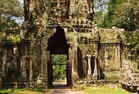 Wietnam i Kambodża - smok w dżungli