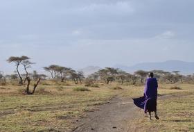 Wyprawa Zanzibar & Serengeti - zwiedzanie Tanzanii